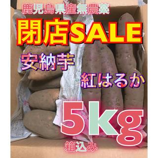 鹿児島県産 無農薬 安納芋と紅はるか 箱込み5kg(野菜)