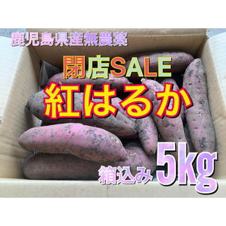鹿児島県産 無農薬 紅はるか 箱込み5kg