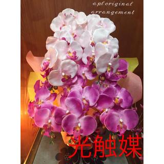 光触媒 人工観葉植物 胡蝶蘭2色5835
