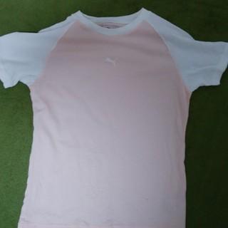 プーマ(PUMA)のプーマ レディースTシャツ(Tシャツ(半袖/袖なし))