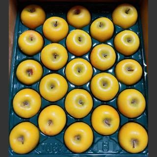 シナノゴールド25個入り ミニサイズりんご(フルーツ)