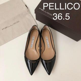 PELLICO - 極美品★ ペリーコ トゥッティ アネッリ フラットパンプス ★ 36.5