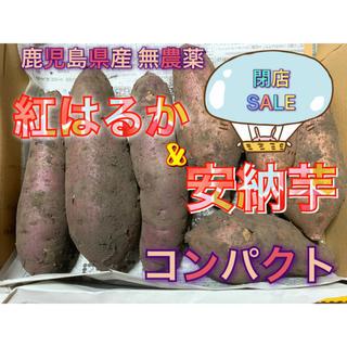 鹿児島県産 無農薬 紅はるかと安納芋 コンパクト(野菜)