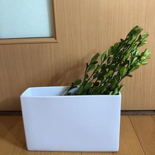 フランフラン(Francfranc)の花瓶×リーフのセット(花瓶)