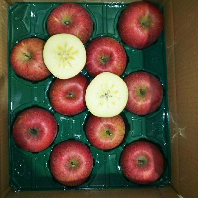 青森産  サンふじ リンゴ 家庭用 12個~16個  農家直送送料無料 食品/飲料/酒の食品(フルーツ)の商品写真