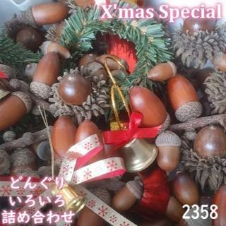 森のどんぐり クリスマス スペシャルBOX 2358(その他)
