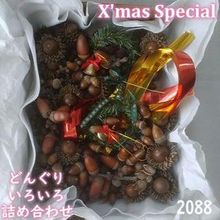 森のどんぐり クリスマス スペシャルBOX 2088(その他)
