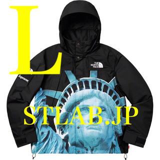 Supreme - L Supreme The North Face Mountain Jacket
