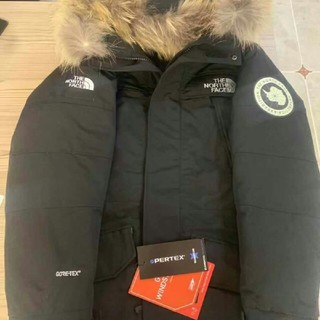 THE NORTH FACE - The North Face アンタークティカパーカ
