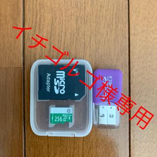 Micro SD Card 256GB