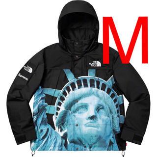 Supreme - supreme north  face mountain jacket