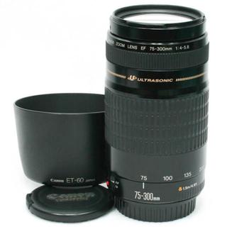 Canon - キヤノン純正フード付★迫力の300㎜★Canon EF75-300 USM