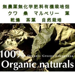 桑 葉 マルベリー ドライ 乾燥 ゆうパケット 天然  自然栽培畑(ペットフード)