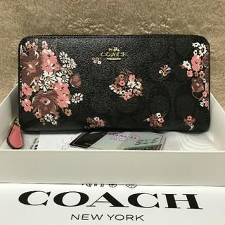 COACH - YKKファスナー コーチ 長財布 新品31572