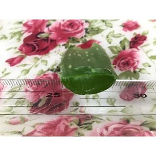 有機 アロエベラ カット 葉 食用 美容 完全無農薬無化学肥料有機栽培(菓子/デザート)