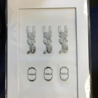 ディオール(Dior)のDIOR プレフォール'19 メンズ ロゴステッカー(しおり/ステッカー)