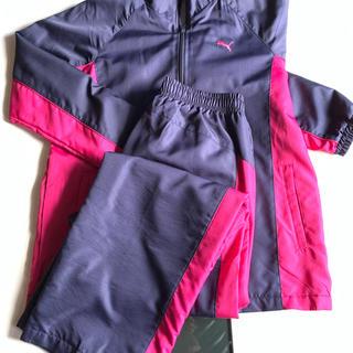 PUMA - PUMA sportlifestyle ジャージ
