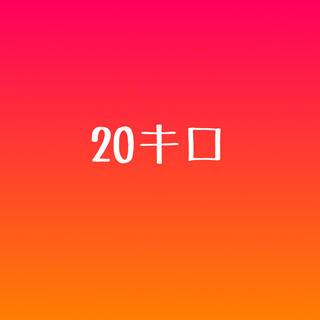ttt.kaaaasan様専用 10キロ二箱(フルーツ)