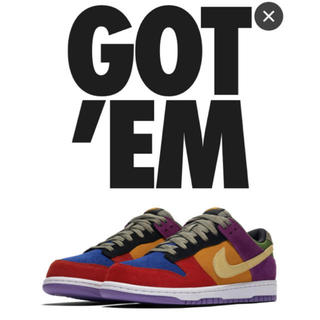 ナイキ(NIKE)のNIKE DUNK LOW VIOTECH (スニーカー)