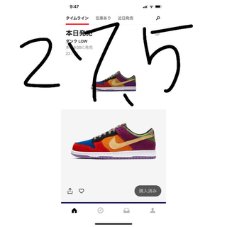 "ナイキ(NIKE)のNIKE DUNK LOW SP ""VIOTECH""(スニーカー)"