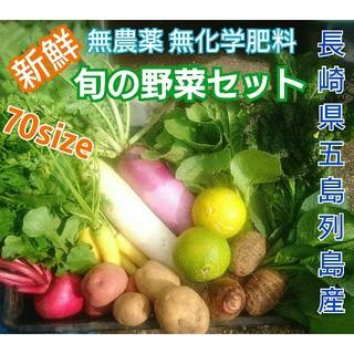 無農薬❗新鮮野菜セット(70サイズ) 〈ラインナップご確認を〉 長崎県五島列島産(野菜)