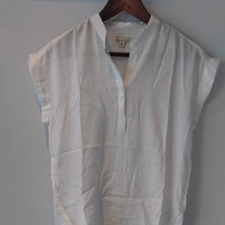 gap 白いシャツ