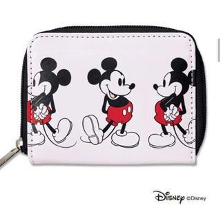 シップス(SHIPS)の mini 12月号の付録は、SHIPSのミッキーマウス 二つ折り財布(財布)