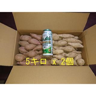 安納芋 & 種子島ゴールド SSサイズ10キロ(野菜)