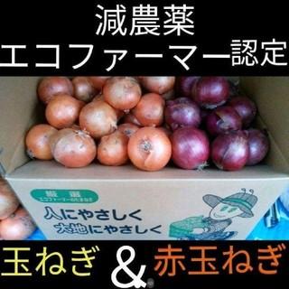 北海道産 減農薬 玉ねぎ 赤玉ねぎ ミックス 20キロ(野菜)