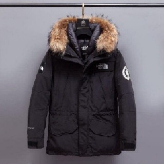 THE NORTH FACE - the north faceダウンジャケット
