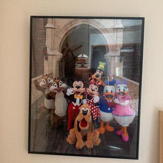 Disney - ディズニーギャラリー 額縁付き実写ポスター