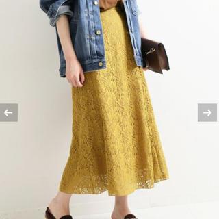イエナ(IENA)の【IENA】フラワーレーススカート 40(ひざ丈スカート)