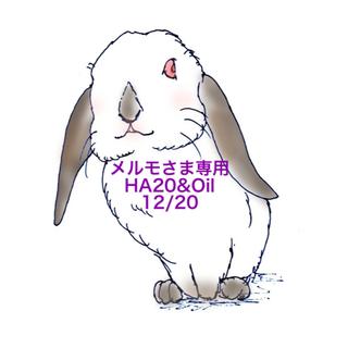 ★12/20★メルモさま専用ページ  2点(その他)