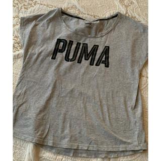 PUMA - PUMA グレーTシャツ ジム ワークアウト ダンス