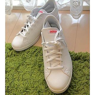 adidas - アディダスレディース スニーカー 24