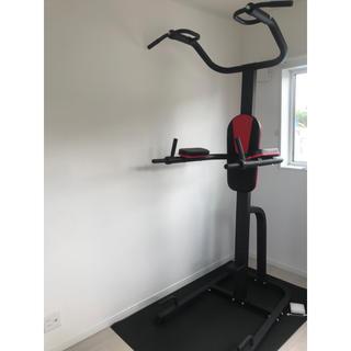 ホームジム DX 懸垂器具 腹筋 腕立て運動可能 マルチジム LE-VKR1