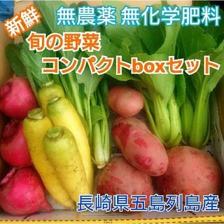 無農薬❗新鮮野菜セット〈コンパクトbox〉(ラインナップのこ確認を) 五島列島産