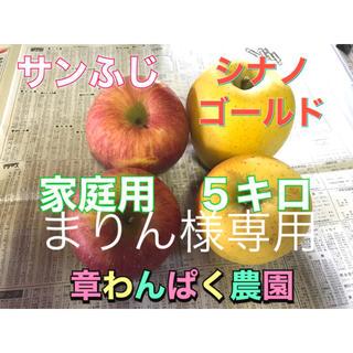 まりん様専用 サンふじ シナノゴールド  5キロセット 章わんぱく農園(フルーツ)