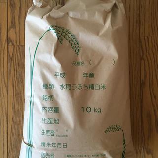 長野県産<もち米> 精米5キロ(米/穀物)
