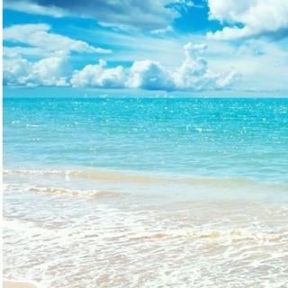 Plage - plage スーパーファインウールプルオーバー