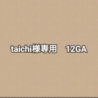 taichi様専用 薬莢(その他)