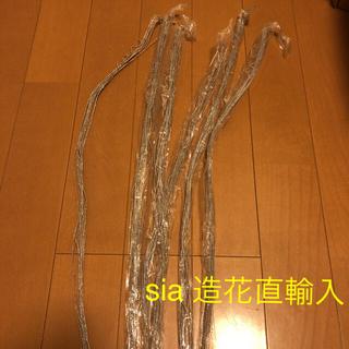 sia シルバーラメ 6本 現品限り お値下げ(その他)
