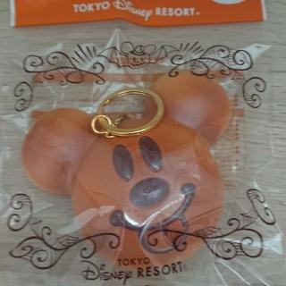 Disney - ディズニーランド スクイーズ ミッキー