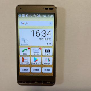 キョウセラ(京セラ)のkyv43 BASIO(Shinchi様専用)(携帯電話本体)