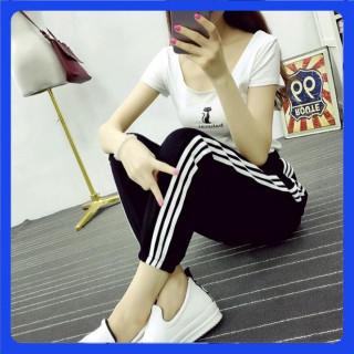【限定価格】サイドラインパンツ ジョガーパンツ 3本ライン M 黒 レディース(カジュアルパンツ)
