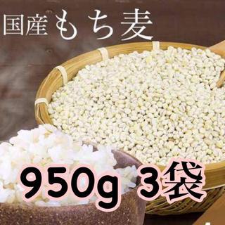 【お買い得】国産 もち麦 950g×3袋 (約2.9kg)(米/穀物)