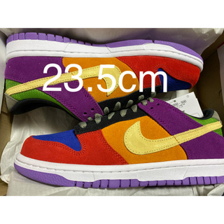 ナイキ(NIKE)のNIKE DUNK LOW VIOTECH(スニーカー)