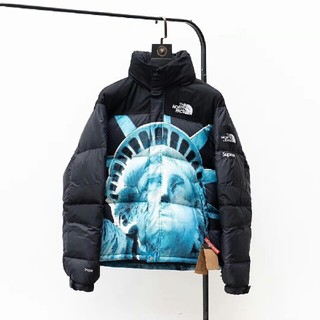 THE NORTH FACE - Supreme x The North Face