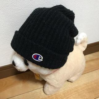 Champion - キッズ  ニット帽 チャンピオン