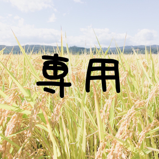 即購入OK♪【農家直送】新米 宮城県産つや姫 上白米10kg【送料無料】